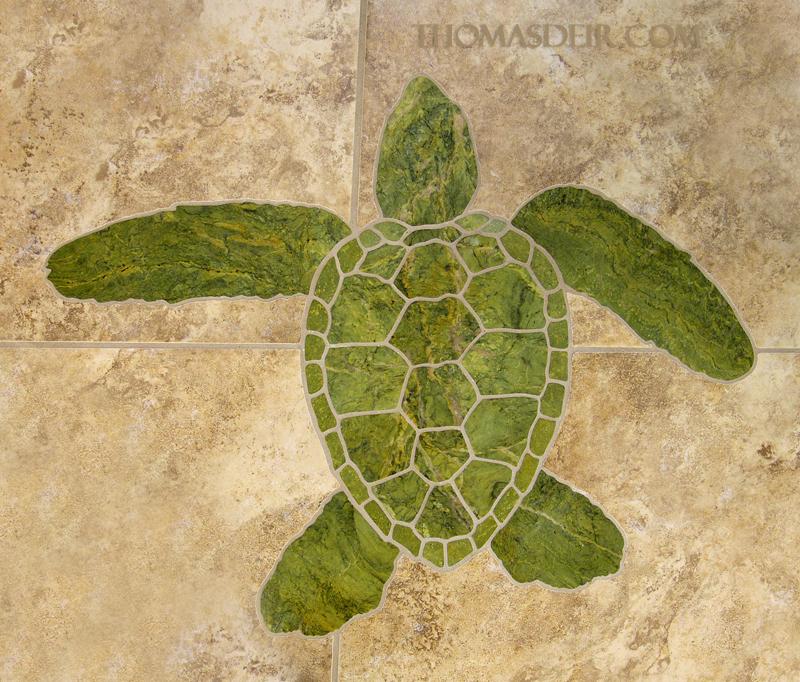 Mosaic Turtle Bath Entry Floor