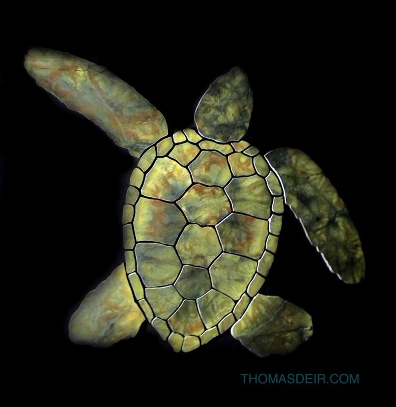 granite turtle floor mosaic