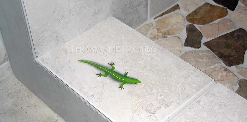 Gecko Tile Mural Shower detail