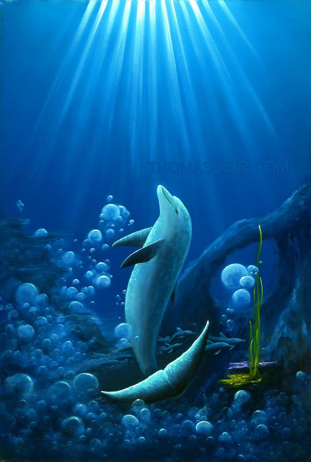 Shaka Dolphin Painting